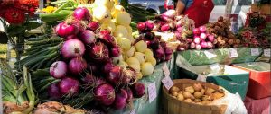North Union Farmers Market @ Shaker Square | Cleveland | Ohio | United States